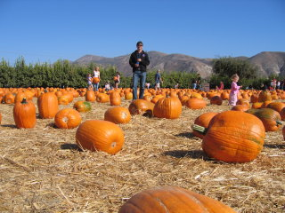 Vespastics Pumpkin Ride - 2004 pictures from vento