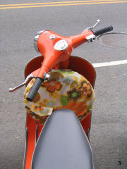 Scootergate - 2006 pictures from Just_Another_Nick